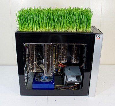 freakin-PC-grow-grass