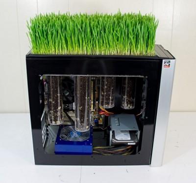 freakin-PC-grow-grass